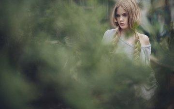 зелень, девушка, фон, взгляд, волосы, косы