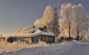 дорога, деревья, снег, зима, утро, иней, деревня, дом, россия, архангельская область, саунино