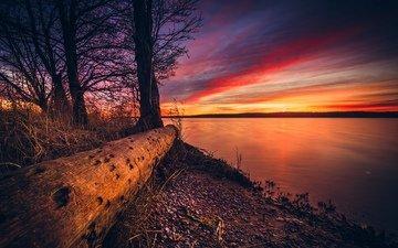 облака, деревья, вода, берег, закат, солнечный свет, литва, руслан болгов, куршская коса