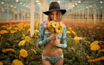 flowers, girl, look, hair