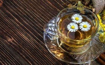 цветы, напиток, ромашка, блюдце, чашка, чай