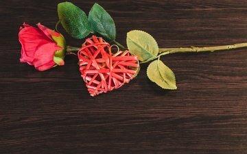 flower, rose, heart, bud