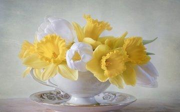 цветы, блюдце, букет, тюльпаны, чашка, нарциссы