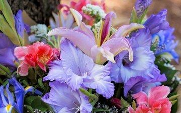 цветы, букет, лилии, ирисы, гладиолус
