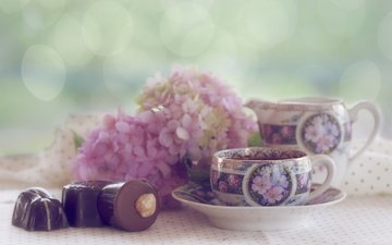 цветы, конфеты, чай, шоколад, чашки, натюрморт, гортензия, sarahharas1