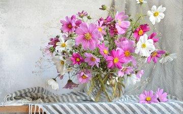 цветы, лето, букет, ваза, шарф, космея