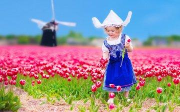 цветы, природа, платье, поле, мельница, девочка, тюльпаны, ребенок, панама