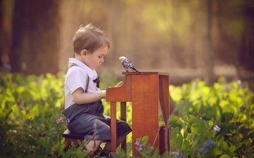 flowers, nature, child, boy, baby, piano, bird, parrot