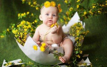 цветы, ребенок, одуванчики, малыш, венок, скорлупа, яйцо