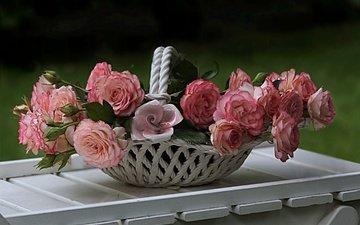 цветы, розы, доски, ваза, столик