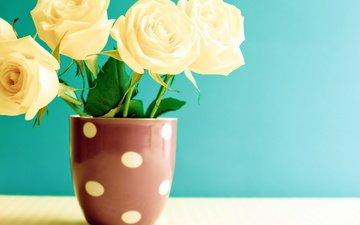 цветы, розы, кружка, букет, чашка