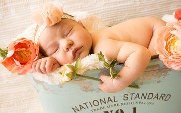 цветы, сон, девочка, ребенок, одеяло, младенец, мех, ящик