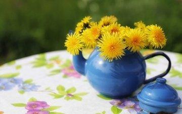 цветы, стол, одуванчики, чайник, скатерть