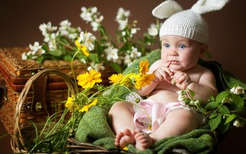 flowers, ears, child, baby, cap, bunny, box, basket