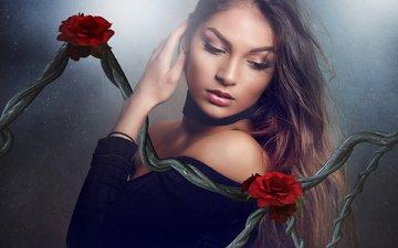 цветы, ветка, девушка, розы, графика, рендеринг, плечи, шатенка, 3д