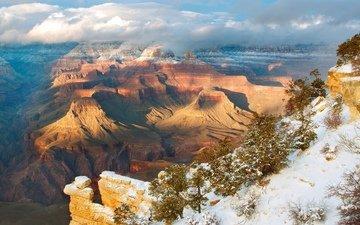 деревья, горы, снег, зима, парк, высота, сша, аризона, каньоны