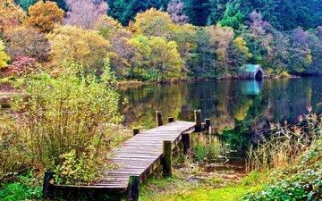 деревья, озеро, природа, мостик, осень, домик, леса, шотландия