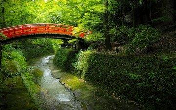 деревья, вода, мостик, парк, канал, япония