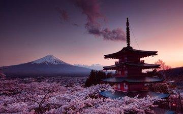 гора, япония, весна, фудзияма