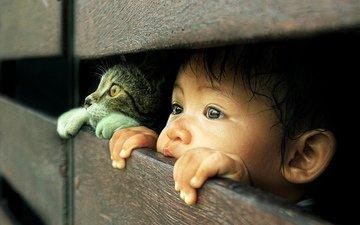 глаза, кот, взгляд, котенок, дети, волосы, лицо, ребенок, мальчик