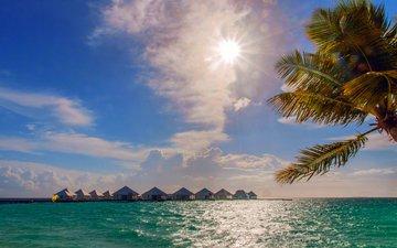 море, пальма, отдых, бунгало, тропики, мальдивы