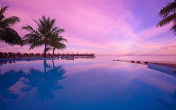 море, пальмы, отдых, остров, курорт, бунгало, тропики, мальдивы