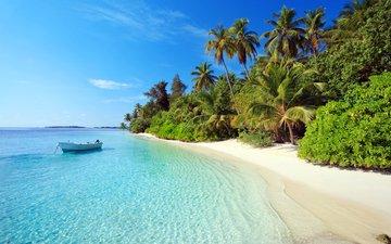 море, пляж, лодка, пальмы, отдых, остров, тропики, мальдивы