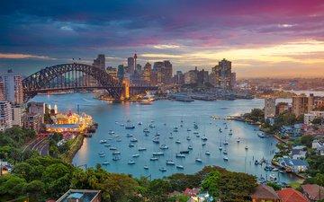 мост, город, лодки, залив, дома, сидней, здания, сумерки, австралия, харбор-бридж, harbour bridge