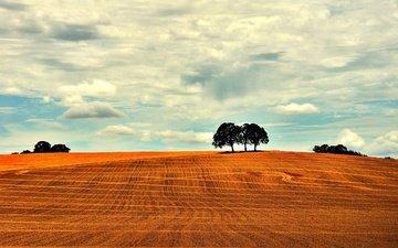 небо, облака, деревья, пейзаж, поле