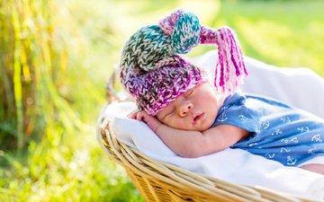 nature, summer, sleep, basket, child, baby, t-shirt, cap, brush