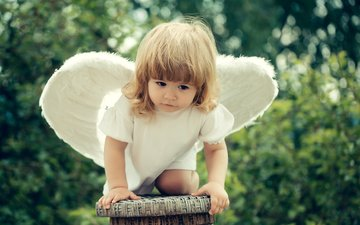 nature, dress, wings, girl, angel, child, stool, baby