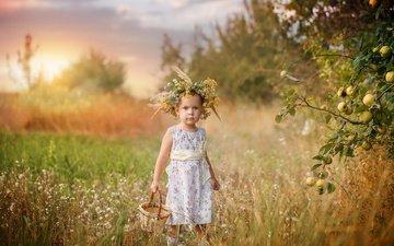 nature, dress, branches, summer, apples, girl, child, wreath, grass, basket