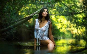 река, девушка, поза, брюнетка, ветви, тело, мокрая