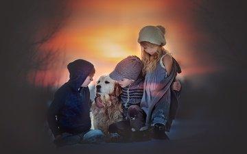 собака, дети, девочка, пес, друзья, мальчики, amber bauerle