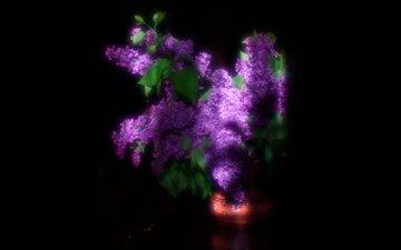 свет, цветы, размытость, весна, черный фон, букет, сирень, надежда ситникова