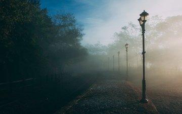 деревья, фонари, парк, утро, туман, дорожка, город, улица