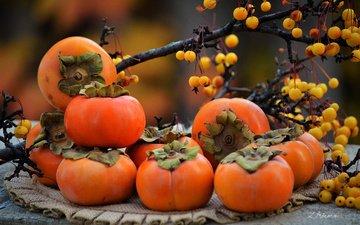 ветки, фрукты, осень, ягоды, салфетка, хурма