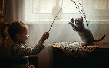 ветки, котенок, девочка, игра, ребенок, животное, ваза, салфетка, верба