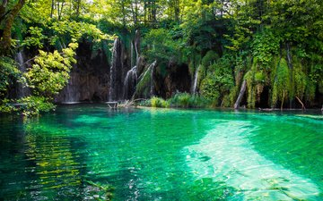 вода, озеро, природа, лес, водопад, тропики, хорватия, плитвицкие озёра