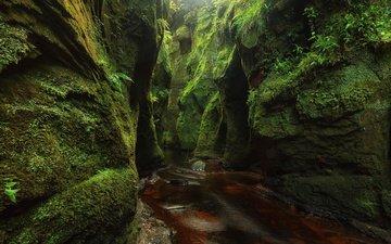 вода, скалы, природа, ручей, мох, речка, шотландия