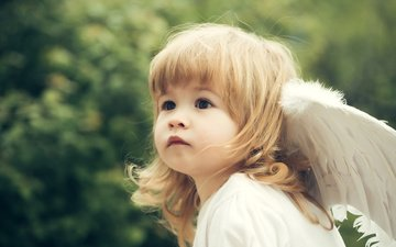 взгляд, крылья, девочка, ангел, лицо, ребенок, малышка