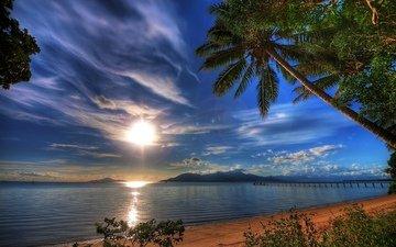закат, пейзаж, море, пальмы