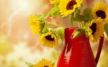 цветы, размытость, букет, подсолнухи, кувшин