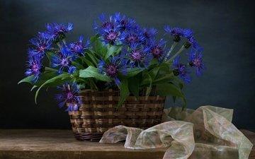 цветы, доска, ткань, васильки, корзинка, полка, тюль