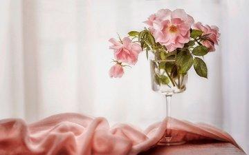 цветы, розы, бокал, ткань, букетик