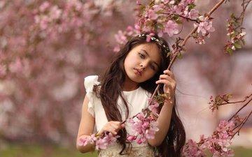 цветы, ветка, платье, девочка, весна, katie andelman