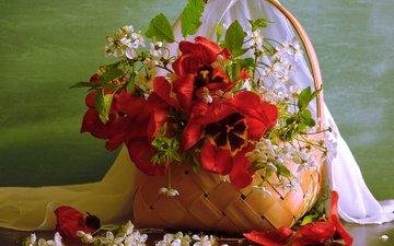 цветы, ветки, доска, лепестки, ткань, корзина, ягоды, тюльпаны, вишня, полка
