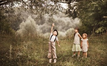 деревья, лето, дети, прогулка, мальчик, девочки, друзья