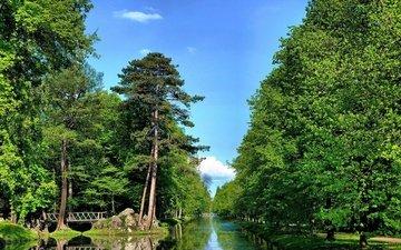 деревья, природа, мостик, парк, водоем