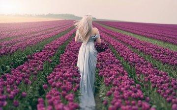 цветы, девушка, платье, блондинка, поле, брюнетка, париж, весна, спина, тюльпаны